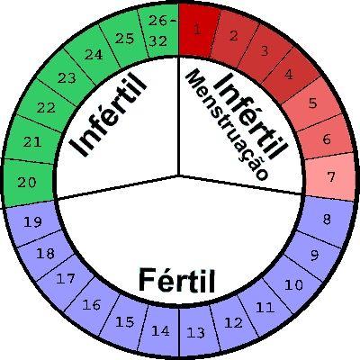 Calculando o Período Fértil Feminino, para Ficar Grávida