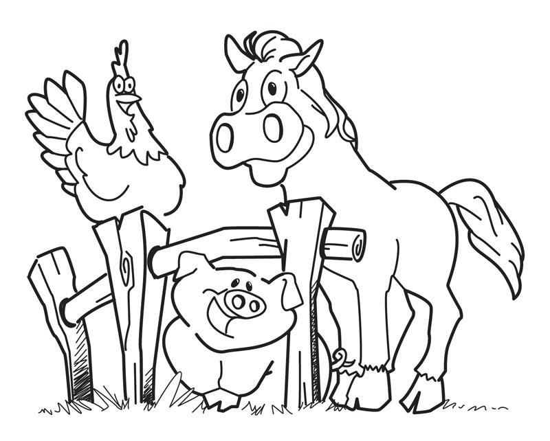 bichinhos na fazenda porco cavalo galinha pra pintar