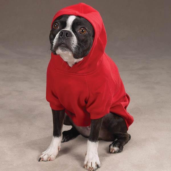 blusa com touca vermelha para cães médios