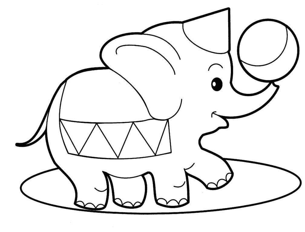 desenho de elefante de circo para pintar