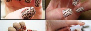 tipos de unhas decoradas com estampas de animais