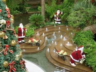 jardim decorado para o natal