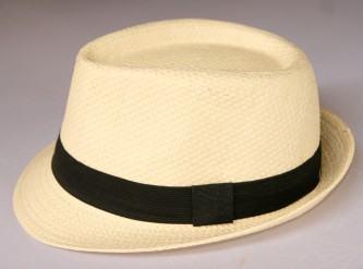 fotos de chapéu panamá masculino